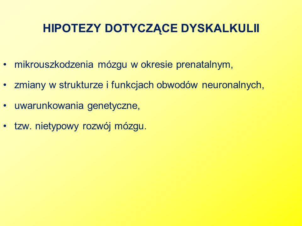 HIPOTEZY DOTYCZĄCE DYSKALKULII