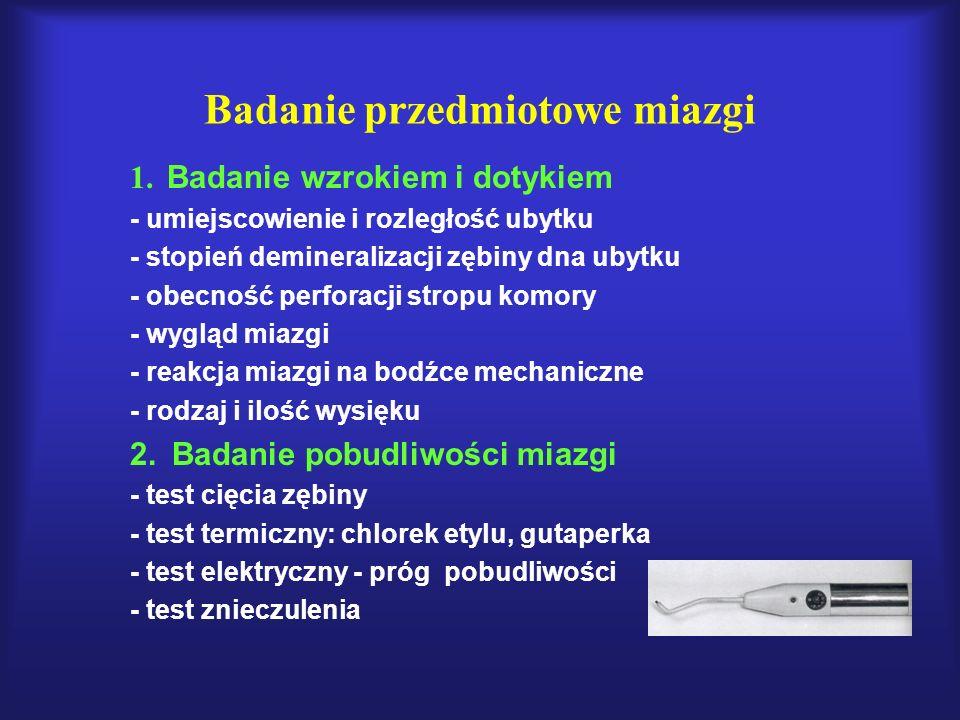 Badanie przedmiotowe miazgi