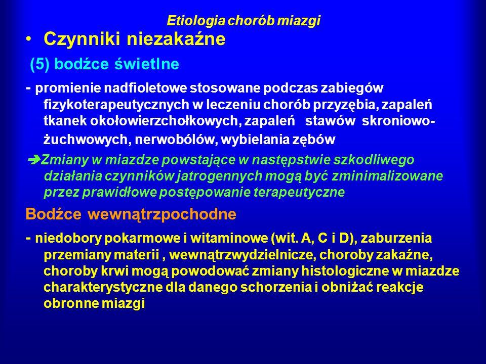Etiologia chorób miazgi