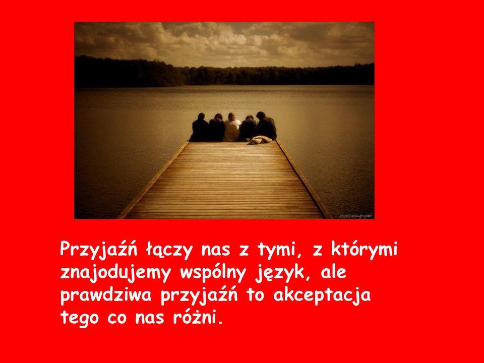 Przyjaźń łączy nas z tymi, z którymi znajodujemy wspólny język, ale prawdziwa przyjaźń to akceptacja tego co nas różni.