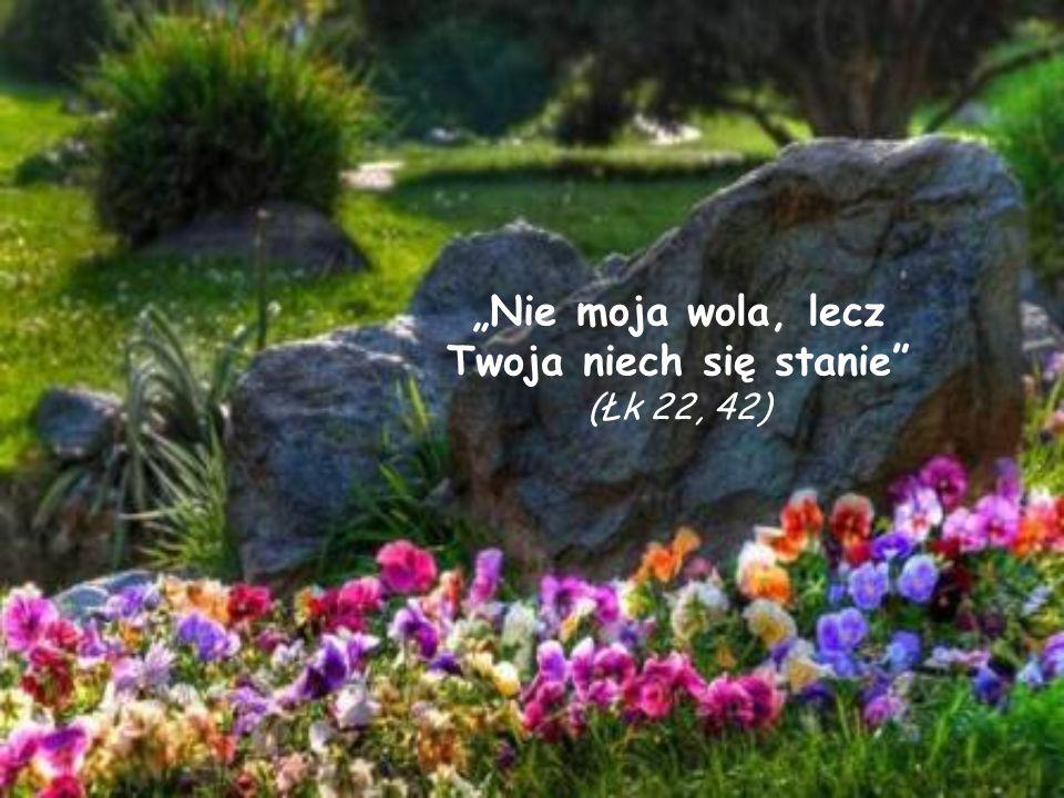 """""""Nie moja wola, lecz Twoja niech się stanie (Łk 22, 42)"""