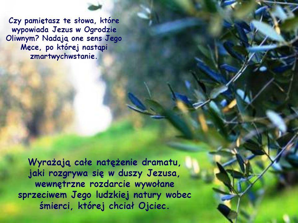 Czy pamiętasz te słowa, które wypowiada Jezus w Ogrodzie Oliwnym