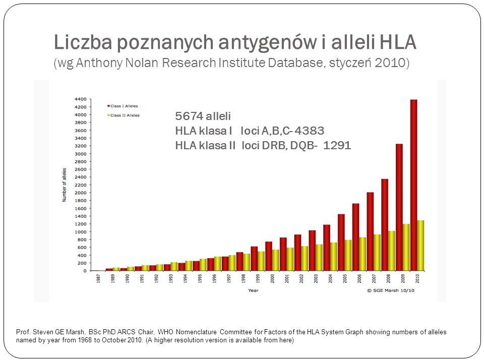 Liczba poznanych antygenów i alleli HLA (wg Anthony Nolan Research Institute Database, styczeń 2010)