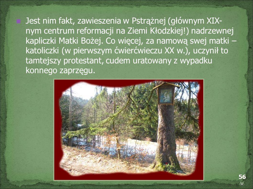 Jest nim fakt, zawieszenia w Pstrążnej (głównym XIX- nym centrum reformacji na Ziemi Kłodzkiej!) nadrzewnej kapliczki Matki Bożej.