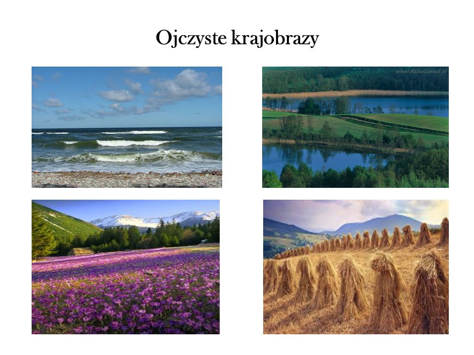 Ojczyste krajobrazy