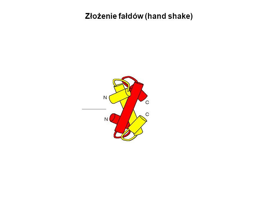Złożenie fałdów (hand shake)