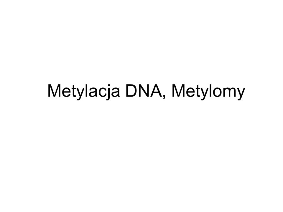 Metylacja DNA, Metylomy