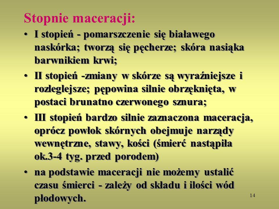 Stopnie maceracji: I stopień - pomarszczenie się białawego naskórka; tworzą się pęcherze; skóra nasiąka barwnikiem krwi;