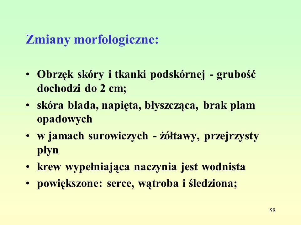 Zmiany morfologiczne: