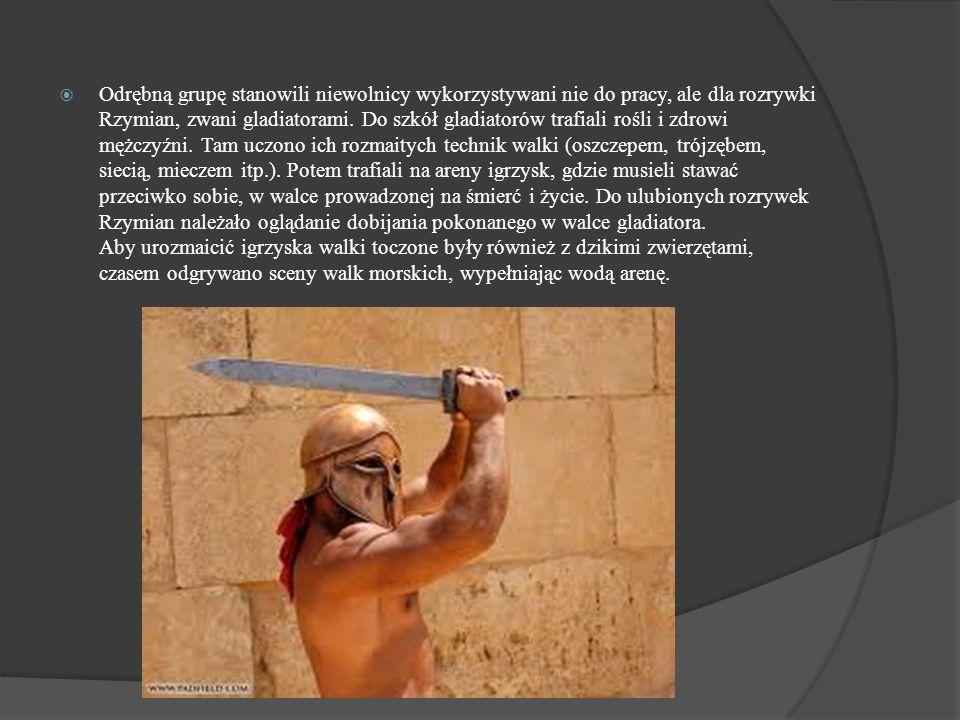 Odrębną grupę stanowili niewolnicy wykorzystywani nie do pracy, ale dla rozrywki Rzymian, zwani gladiatorami.