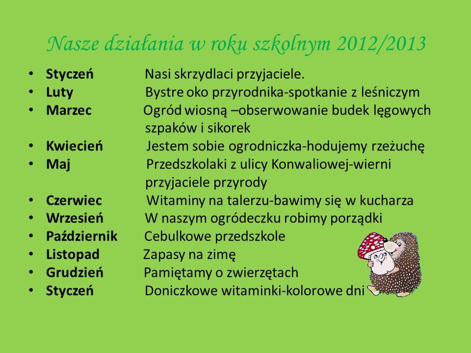 Nasze działania w roku szkolnym 2012/2013