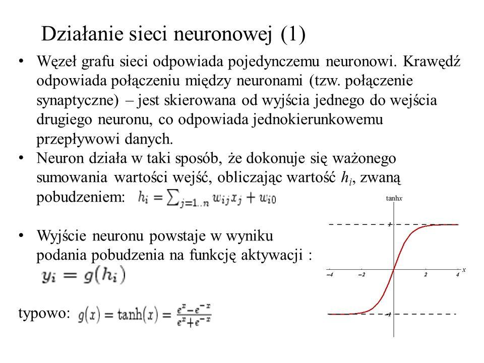 Działanie sieci neuronowej (1)