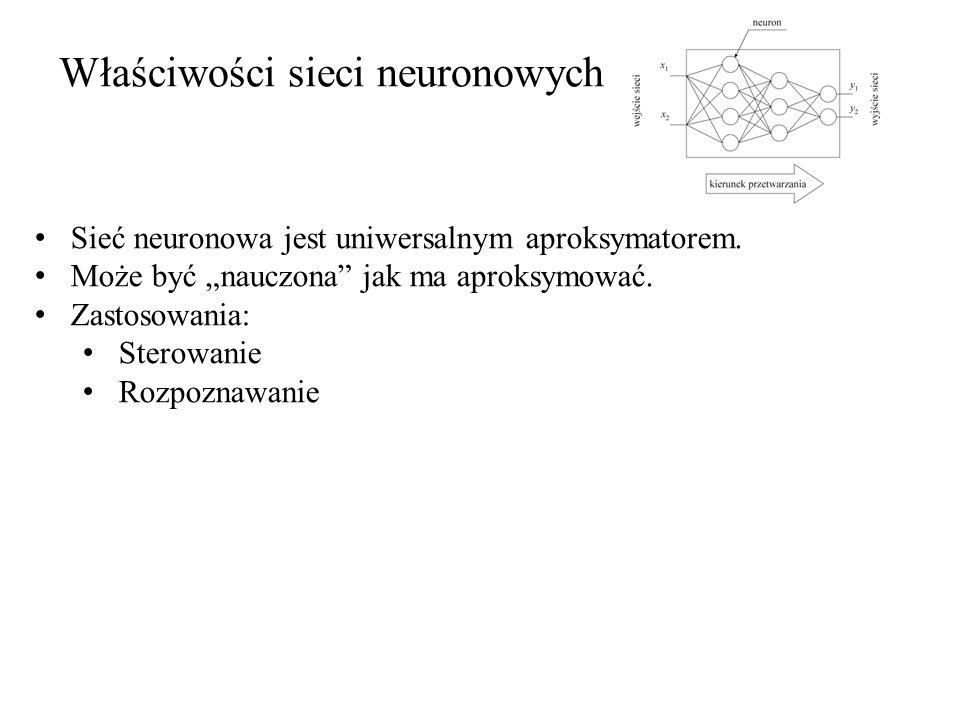 Właściwości sieci neuronowych