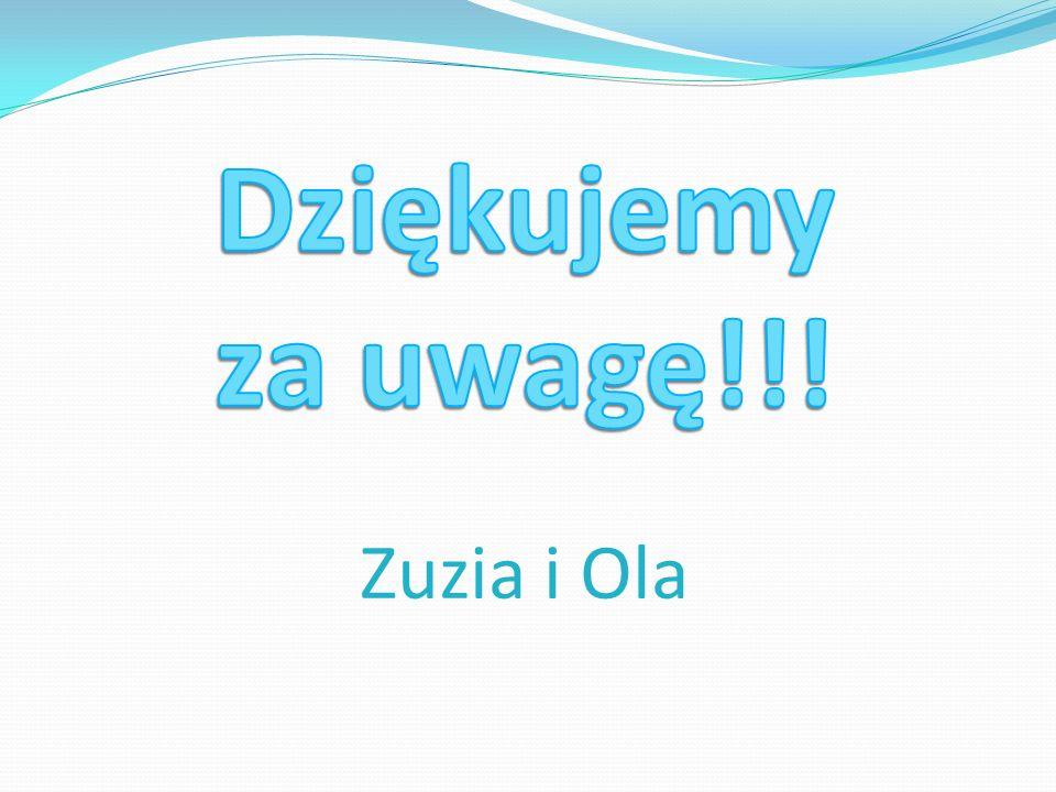 Dziękujemy za uwagę!!! Zuzia i Ola