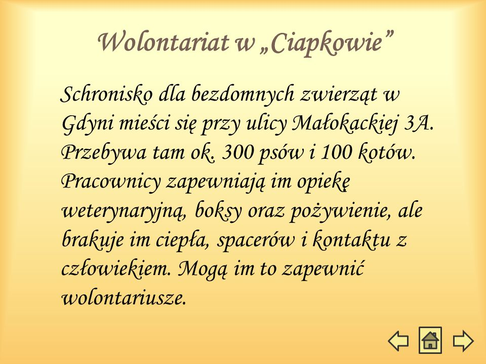 """Wolontariat w """"Ciapkowie"""