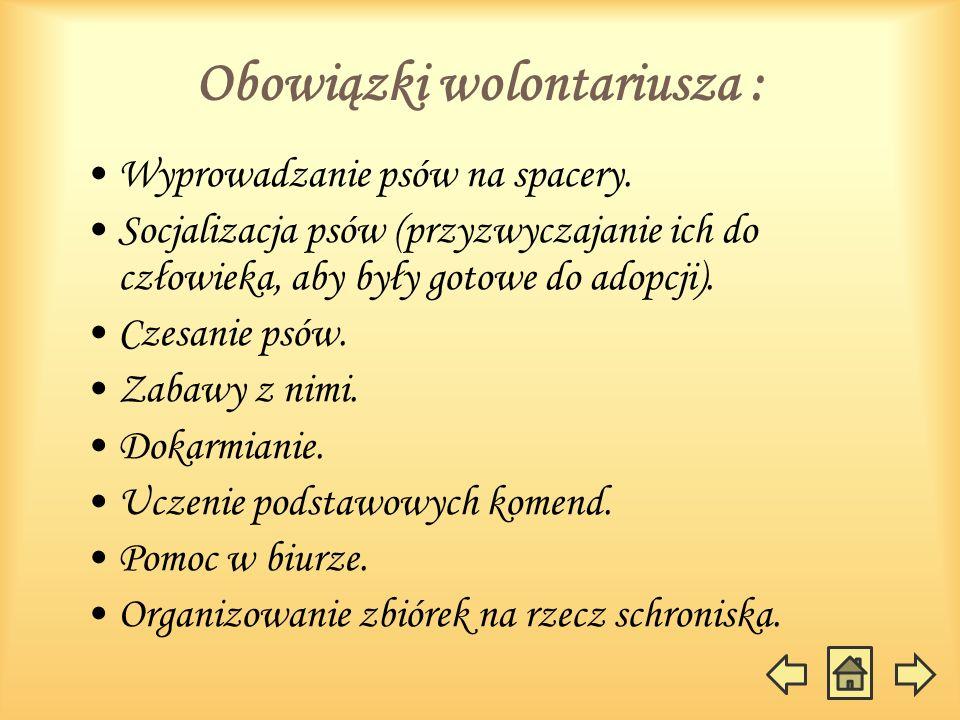 Obowiązki wolontariusza :