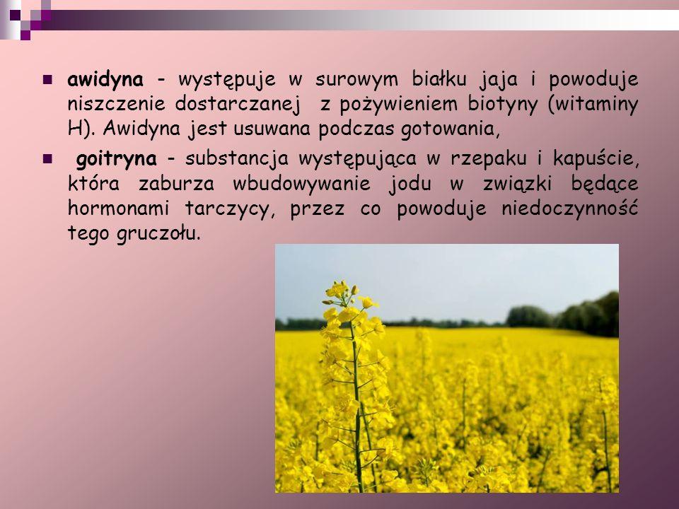 awidyna - występuje w surowym białku jaja i powoduje niszczenie dostarczanej z pożywieniem biotyny (witaminy H). Awidyna jest usuwana podczas gotowania,