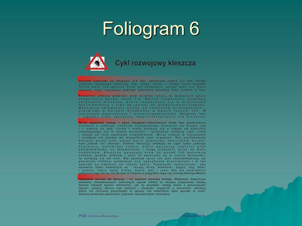 Foliogram 6