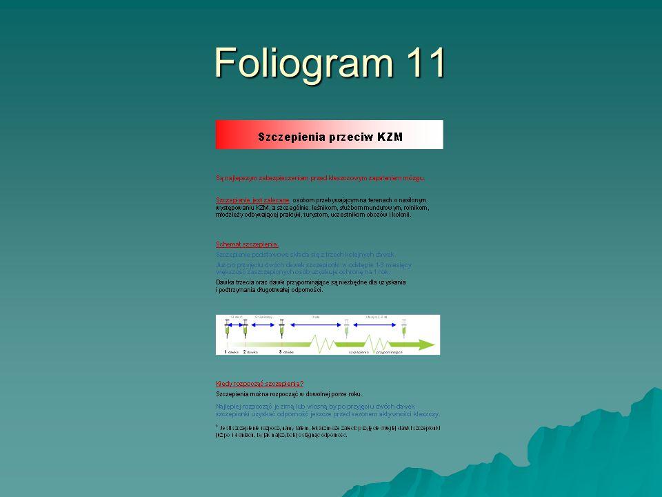 Foliogram 11