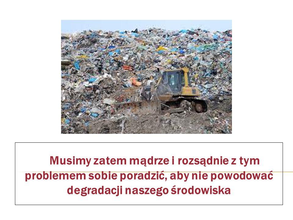 Musimy zatem mądrze i rozsądnie z tym problemem sobie poradzić, aby nie powodować degradacji naszego środowiska