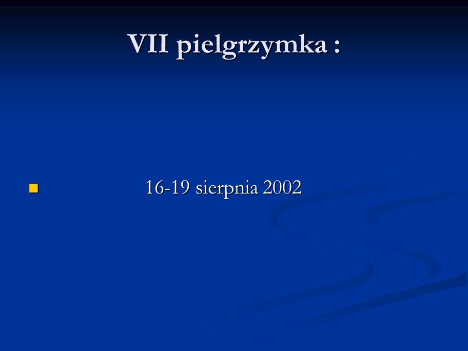VII pielgrzymka : 16-19 sierpnia 2002