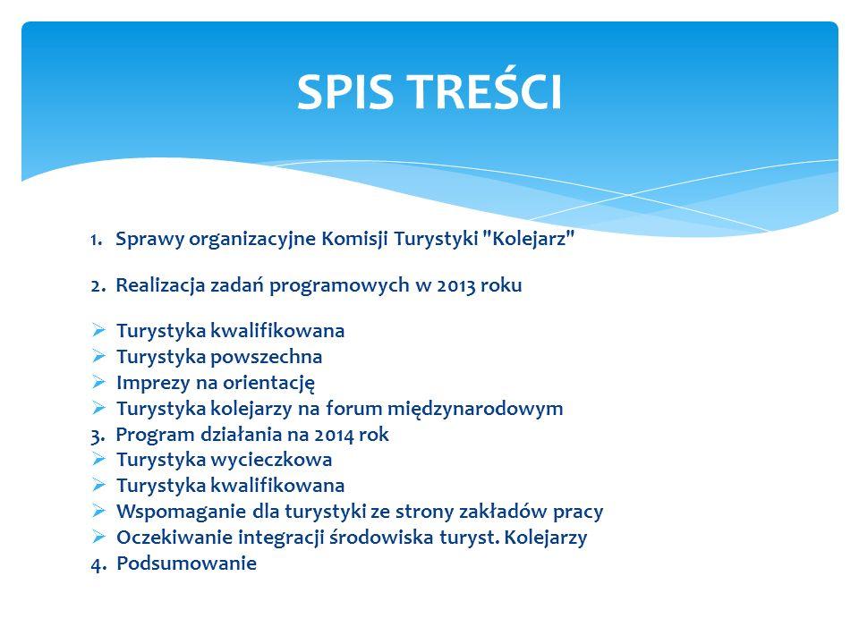 SPIS TREŚCI 2. Realizacja zadań programowych w 2013 roku