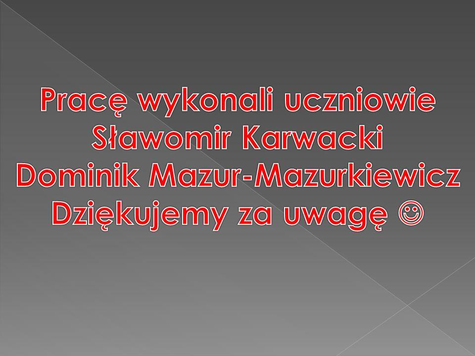Pracę wykonali uczniowie Dominik Mazur-Mazurkiewicz