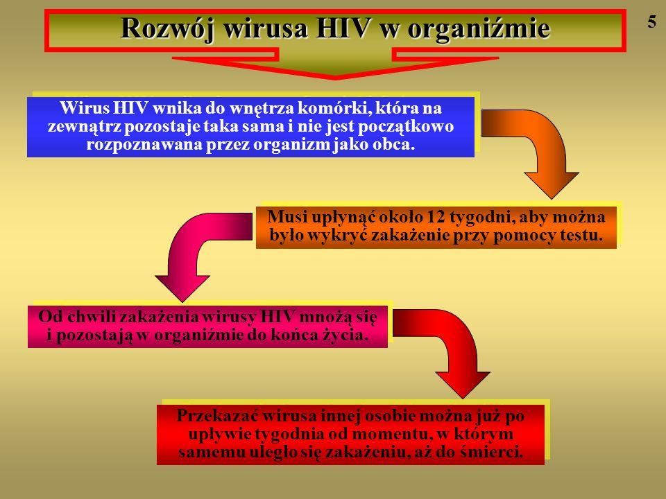 Rozwój wirusa HIV w organiźmie
