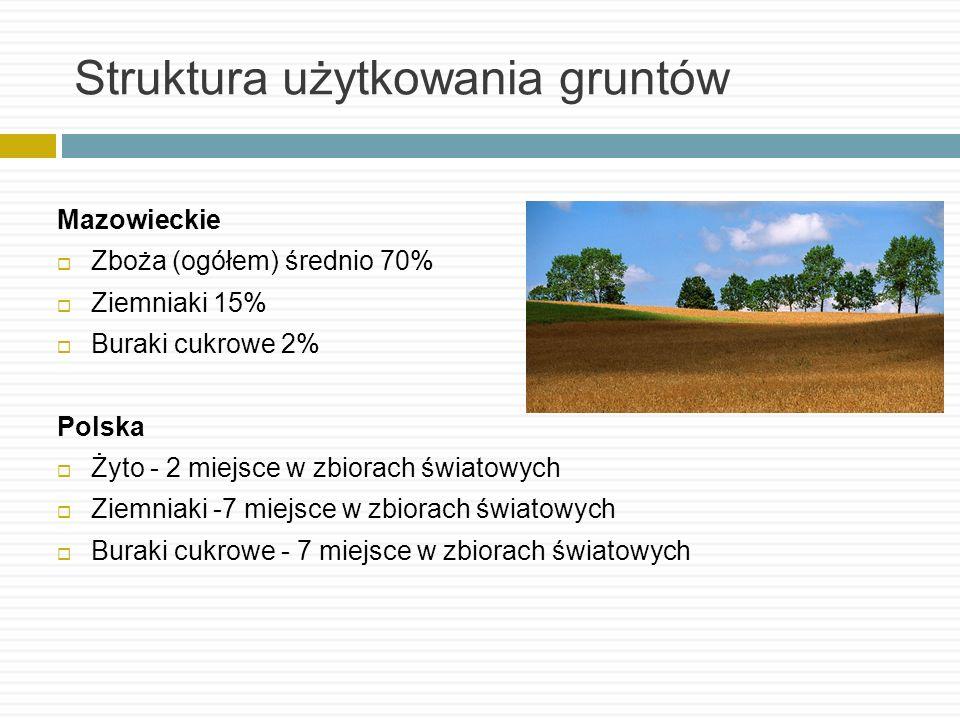 Struktura użytkowania gruntów