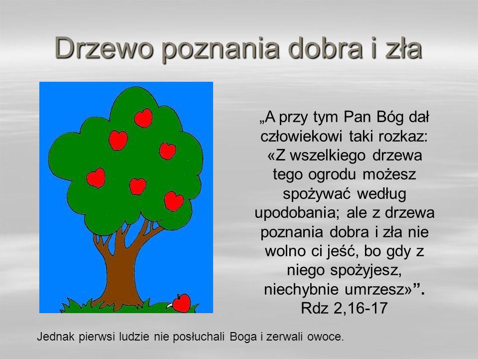 Drzewo poznania dobra i zła