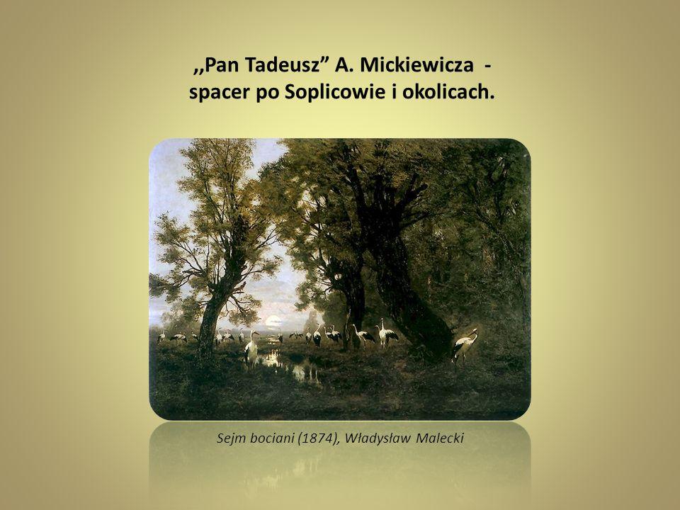 ,,Pan Tadeusz A. Mickiewicza - spacer po Soplicowie i okolicach.