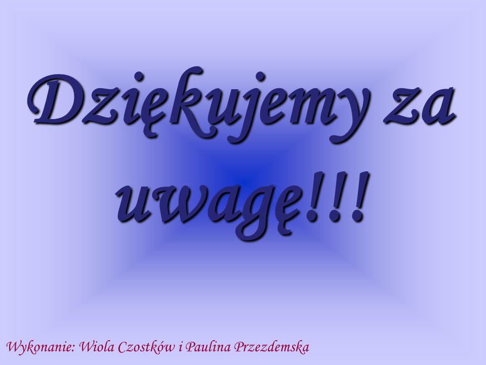 Dziękujemy za uwagę!!! Wykonanie: Wiola Czostków i Paulina Przezdemska
