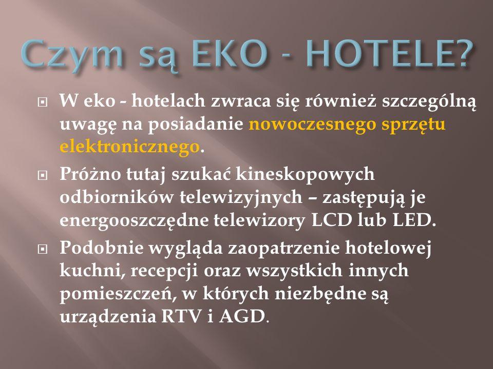 Czym są EKO - HOTELE W eko - hotelach zwraca się również szczególną uwagę na posiadanie nowoczesnego sprzętu elektronicznego.