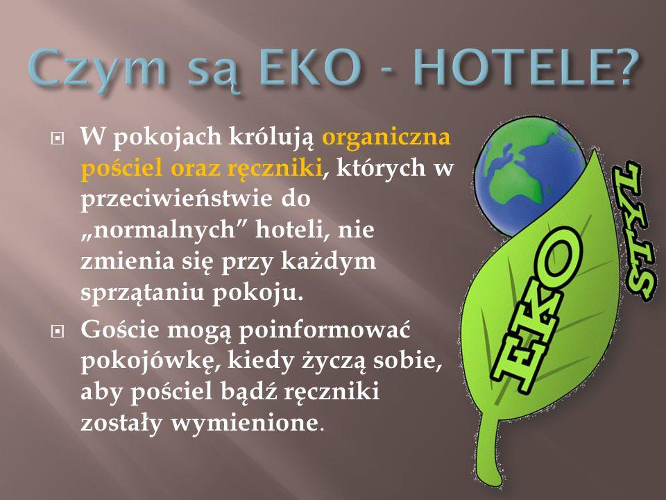Czym są EKO - HOTELE