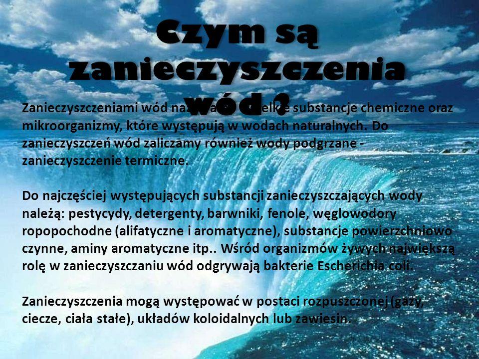 Czym są zanieczyszczenia wód