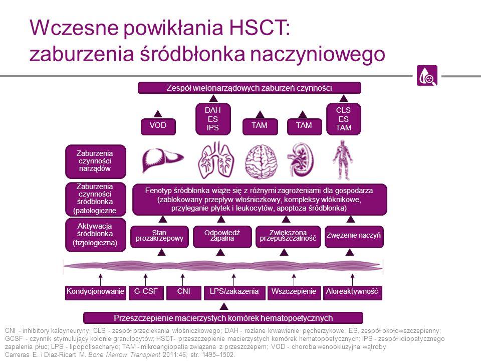 Wczesne powikłania HSCT: zaburzenia śródbłonka naczyniowego