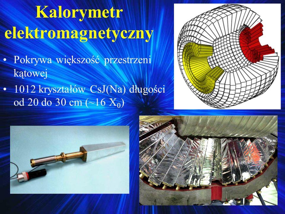 Kalorymetr elektromagnetyczny