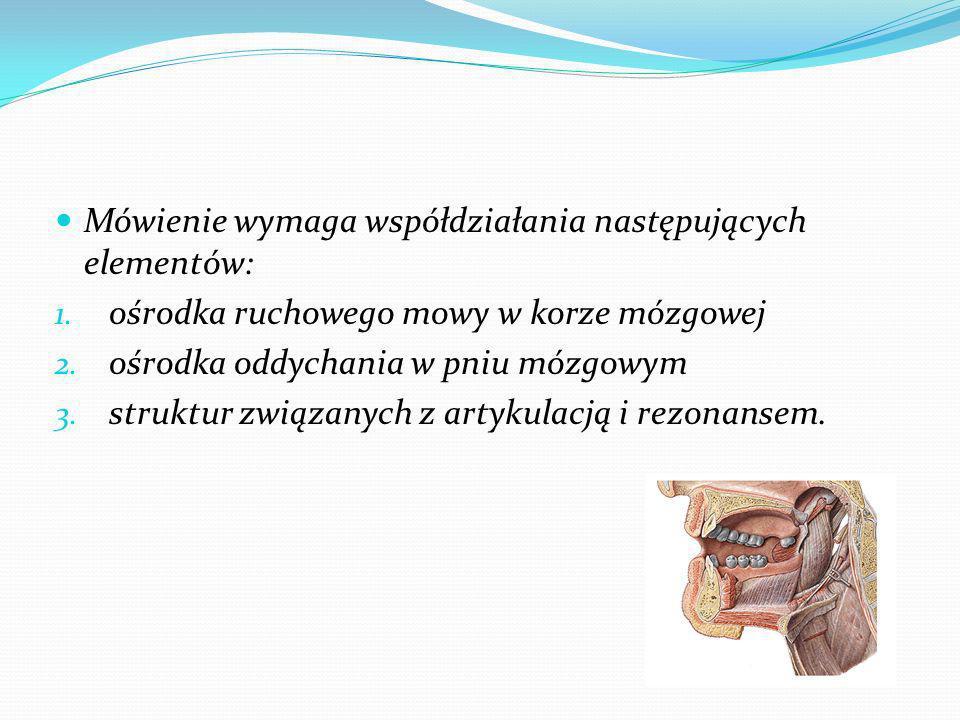 Mówienie wymaga współdziałania następujących elementów: