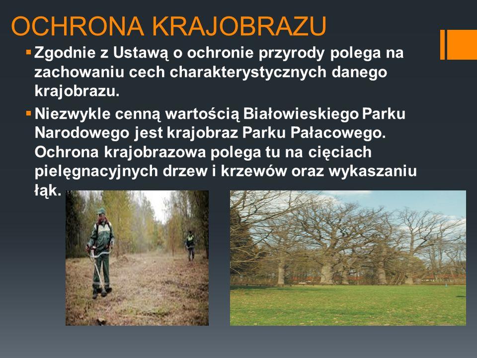OCHRONA KRAJOBRAZU Zgodnie z Ustawą o ochronie przyrody polega na zachowaniu cech charakterystycznych danego krajobrazu.