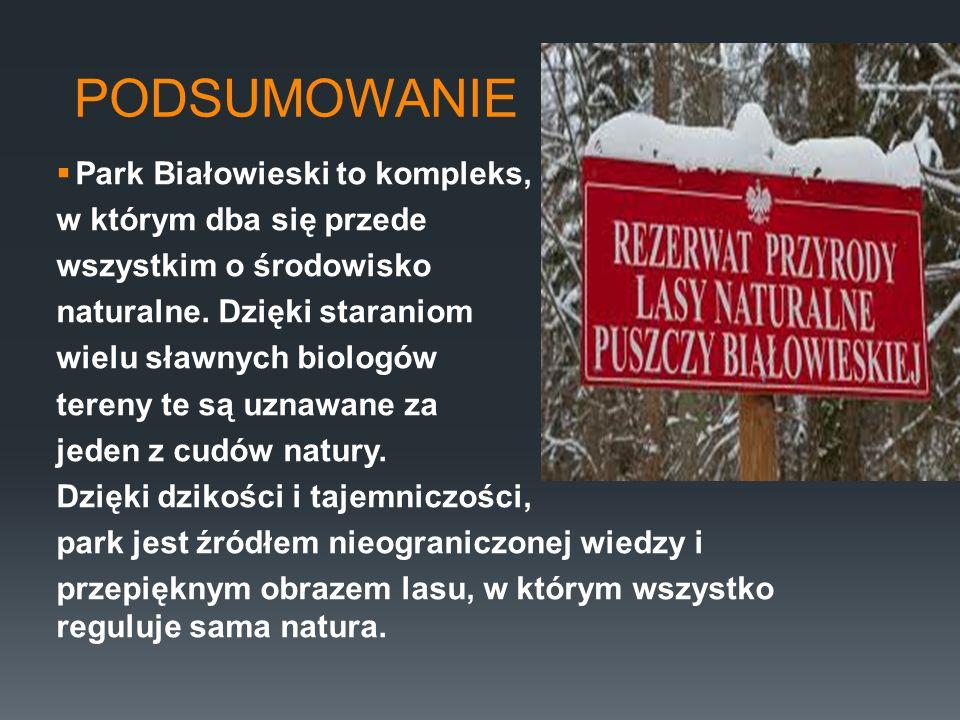 PODSUMOWANIE Park Białowieski to kompleks, w którym dba się przede
