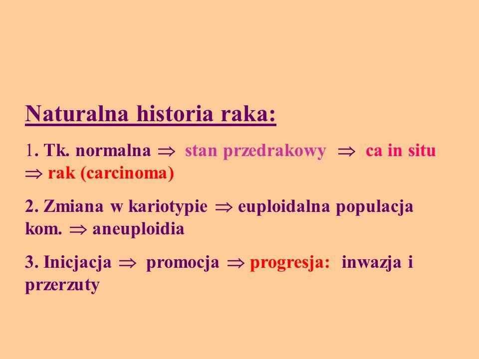Naturalna historia raka: