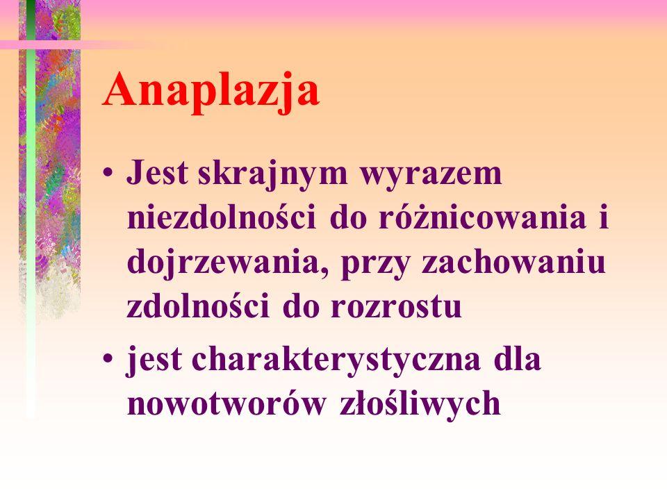 Anaplazja Jest skrajnym wyrazem niezdolności do różnicowania i dojrzewania, przy zachowaniu zdolności do rozrostu.