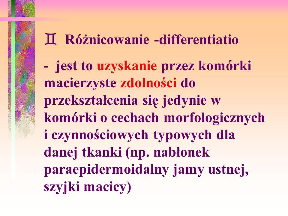  Różnicowanie -differentiatio