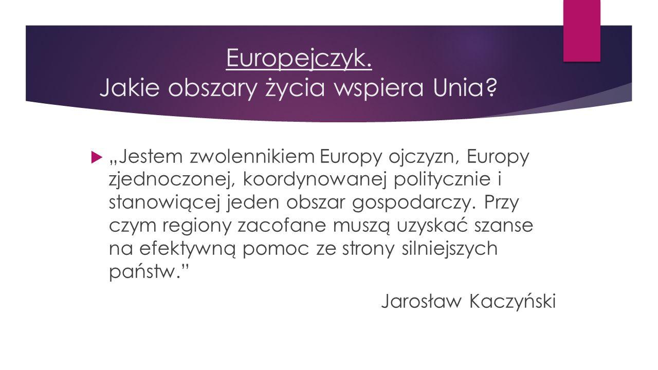 Europejczyk. Jakie obszary życia wspiera Unia