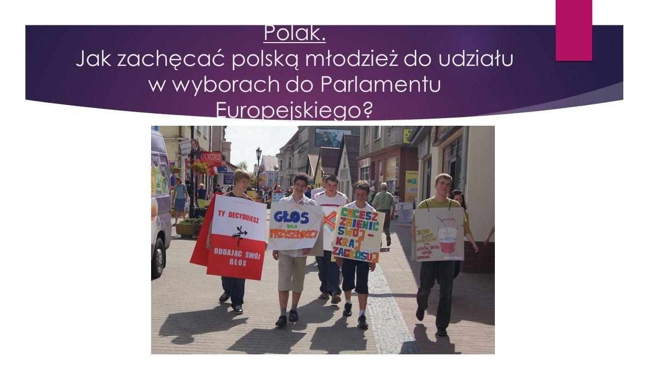 Polak. Jak zachęcać polską młodzież do udziału w wyborach do Parlamentu Europejskiego