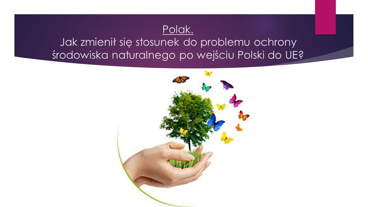 Polak. Jak zmienił się stosunek do problemu ochrony środowiska naturalnego po wejściu Polski do UE