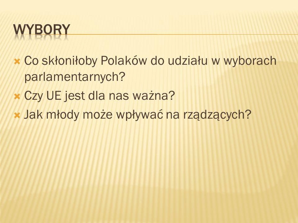 wybory Co skłoniłoby Polaków do udziału w wyborach parlamentarnych