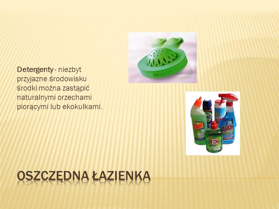 Detergenty - niezbyt przyjazne środowisku środki można zastąpić naturalnymi orzechami piorącymi lub ekokulkami.