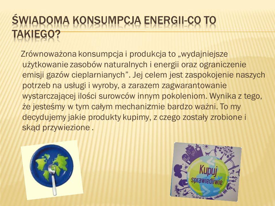 Świadoma konsumpcja energii-co to takiego