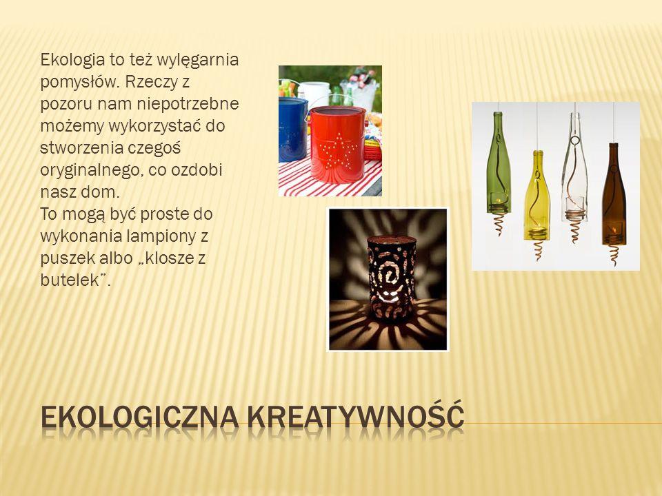 Ekologiczna kreatywność